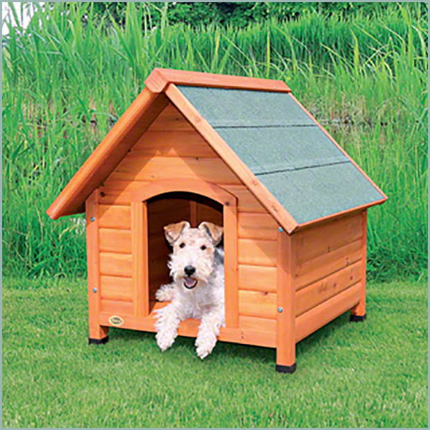 Dog House Gallery Weatherking Private Storage